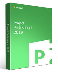 Project Pro 2019 32/64 English EM DVD