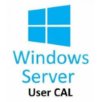 Windows Server CAL 2019 English MLP 5 User CAL