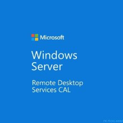 Windows Server CAL 2019 English MLP 20 AE User CAL